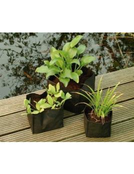 Vrecko na vodné rastliny 18x18x18 cm