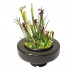 Plávajúci košík na rastliny Ø 22 cm