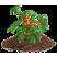 Substráty pre zeleninu, drobné ovocie a citrusy