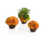 biOrb korálové guličky oranžové