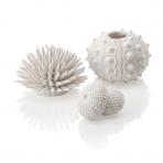 biOrb sea urchins set biely
