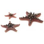 biOrb Sea Stars set rúžová 10, 8 a 5 cm