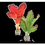 Rastlinky biOrb