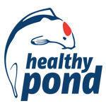 Healthy Pond
