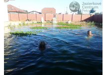 Bio Bazén 100 m3