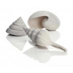 biOrb Sea Shells Decor set biele 12, 7, 5 cm