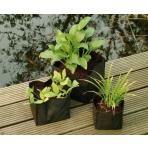 Vrecko na vodné rastliny 25x25x20 cm