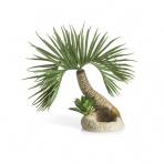 biOrb Palmový strom Seychelly S