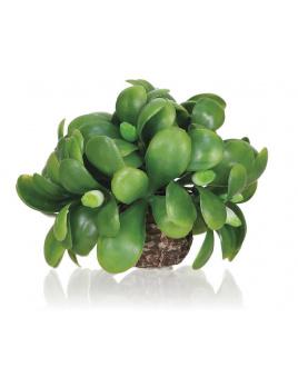 biOrb mistletoe ball