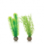biOrb Green Feather Fern set zelené 20,5 cm