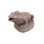 Frog filter