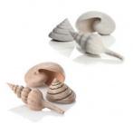biOrb sea shells natural 13 cm, 6,5 cm, 9,5 cm