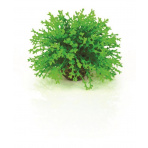 biOrb Topiary Ball - Green 5cm