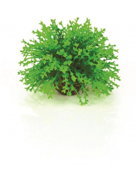 biOrb Topiary Ball - Green 5cm