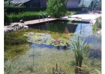 Kúpacie jazero 50 m3
