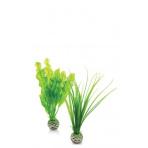 biOrb Plant Pack zelená set 20 cm