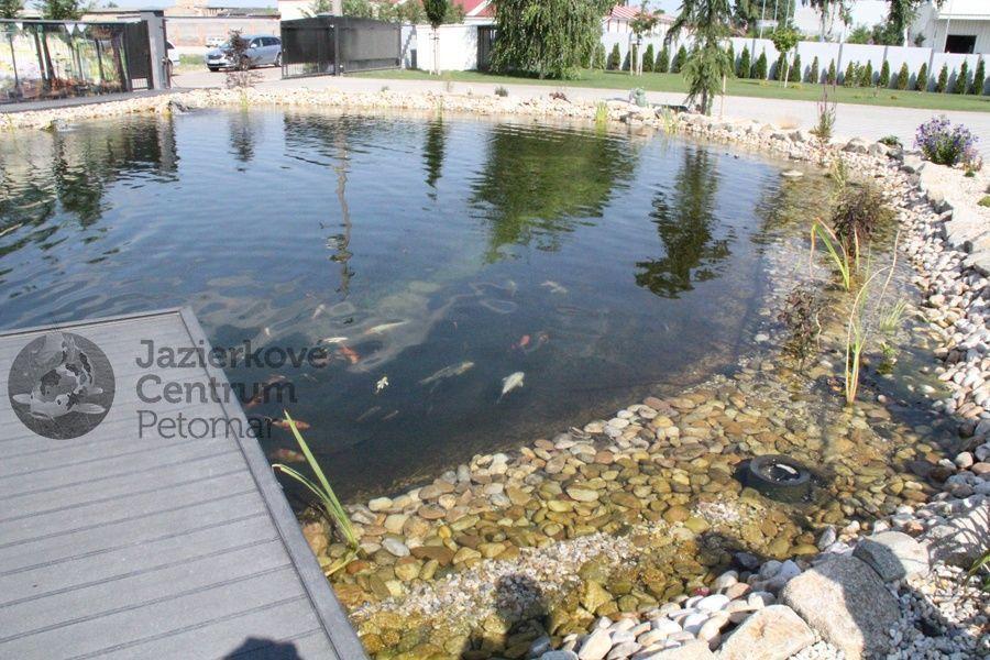 kupacie jazierko s rybami